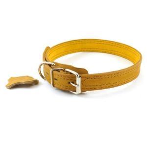 Ошейник для собак Зоомастер, размер 55, размер 2.5х55см., цвета в ассортименте
