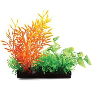 Композиция из аквариумных растений Laguna 1147LD , размер 15см.