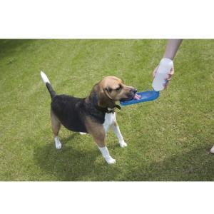 Поилка для собак Savic AQUA BOY, цвета в ассортименте