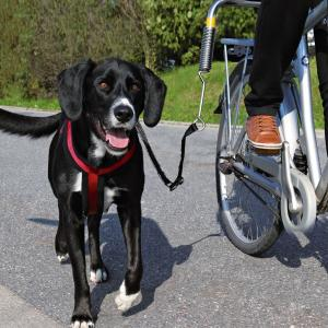 Велоспрингер для собак Trixie Biker-Set, черный