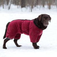Фотография товара Комбинезон  для собак Osso Fashion, размер 45