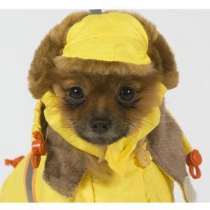 Шапка для собак Тузик 9329, размер 1