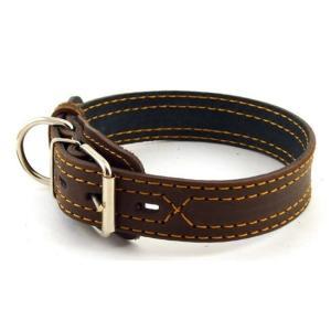Ошейник для собак Зоомастер, размер 50, размер 3.5х50см., цвета в ассортименте