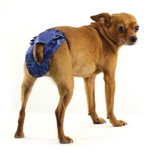 Трусы для собак Гамма