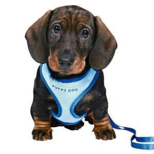 Шлейка для щенков Trixie, синий