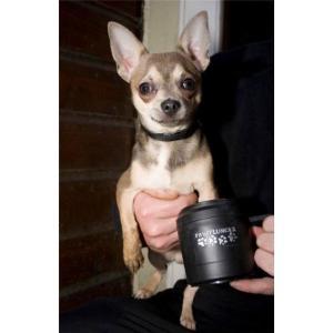 Лапомойка для маленьких собак Paw Plunger, черная
