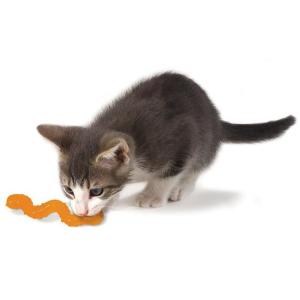 Игрушка для кошек Petstages Orka Wggle Worm, размер 11см.