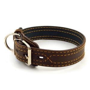 Ошейник для собак Зоомастер, размер 55, размер 3.5х55см., цвета в ассортименте