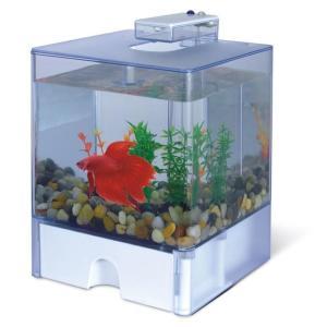 Аквариум для рыб AA-Aquarium  Aqua Box Betta