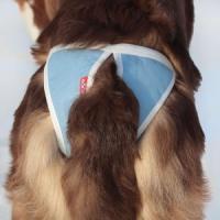 Фотография товара Трусы для собак Osso Fashion Absorb XXL