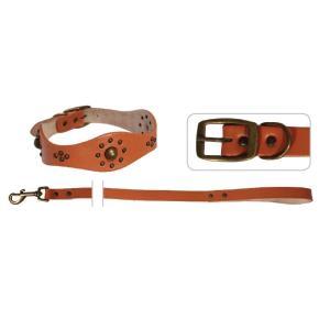 Ошейник с поводком для кошек и собак Triol YS1269, оранжевый