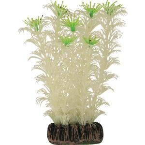 Растение для аквариума Laguna, размер 13см.