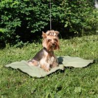 Фотография товара Коврик охлаждающий для собак Osso Fashion M, размер 50х70см.