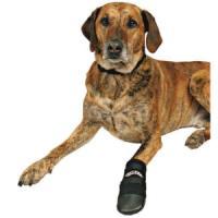Фотография товара Обувь для собак Trixie Walker XXXL, черный