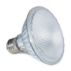 Лампа для террариума Repti-Zoo Friendly Par30