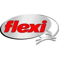 Flexi (Флекси)