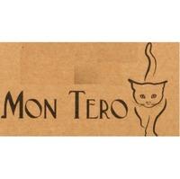 Mon Tero Eco Toys (Мон теро эко тойс)