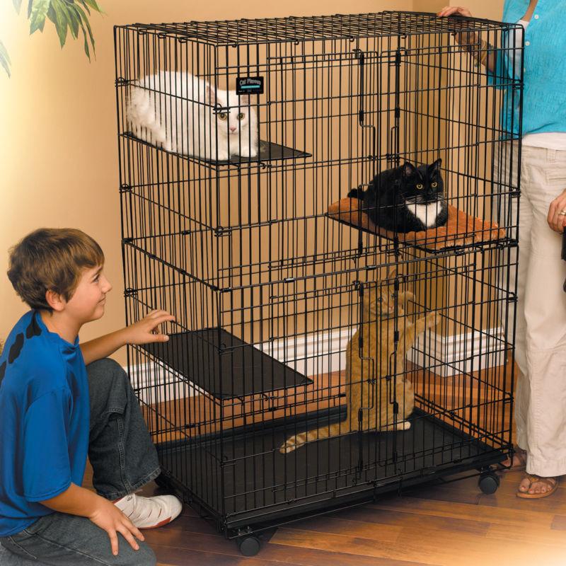 Нужна клетка для кошки картинка