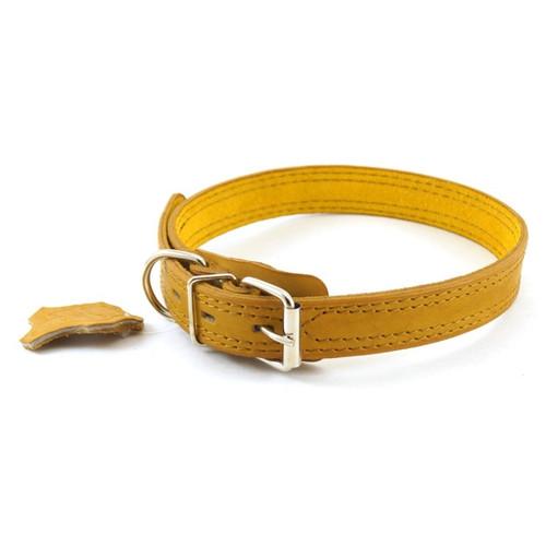 Ошейник для собак Зоомастер, размер 50, размер 2.5х50см., цвета в ассортименте