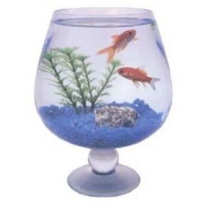 Аквариум для рыб Стандарт Бокал, размер 1, 1 л