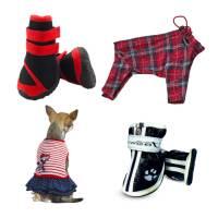 Одежда и обувь собак