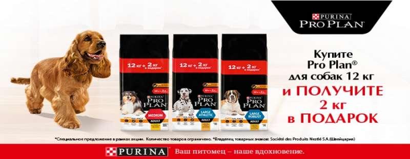 Акция на корма для собак Pro Plan