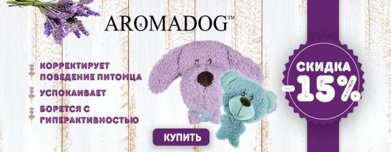 Дачный сезон  на игрушки с запахом для собак