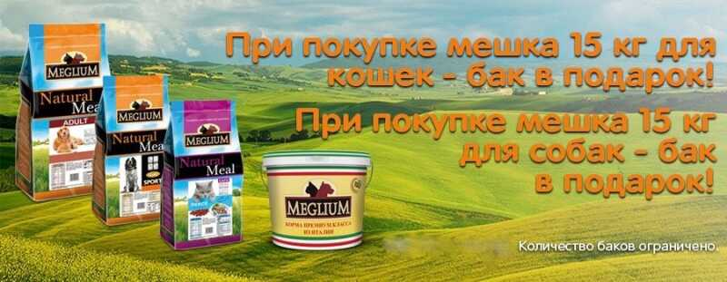 Meglium дарит подарки!