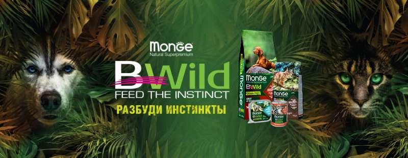 Monge BWild - высокое качество по низкой цене
