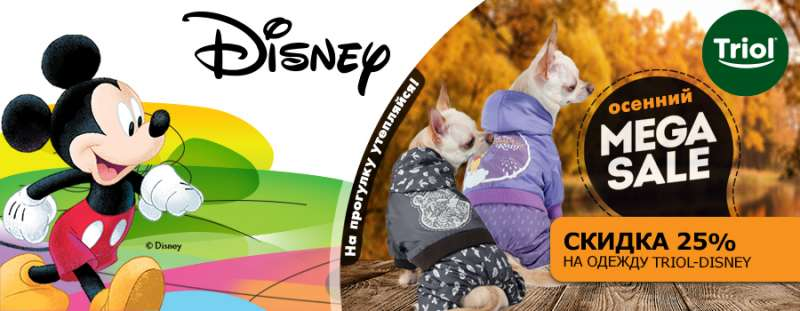 Теплая и сухая осень от Triol Disney