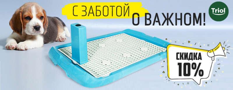 Туалеты для собак: практично и выгодно