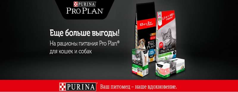 Выгодное предложение от Pro Plan