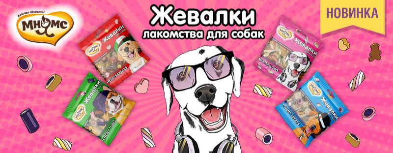 """Встречайте новинку """"Жевалки"""" для собак"""