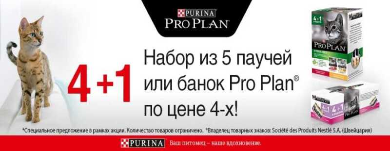 Заманчивое предложение на консервы Pro Plan